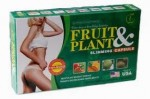 Pelangsing badan fruit and plant