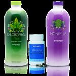 Obat Herbal Impotensi