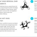 Obat-Forex-Asli-bandung